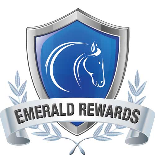 the emerald research register for this Register the emerald heights international school april 1, 2017 april 7, 2017 admin the global research immersion programme (grip) was the best answer.